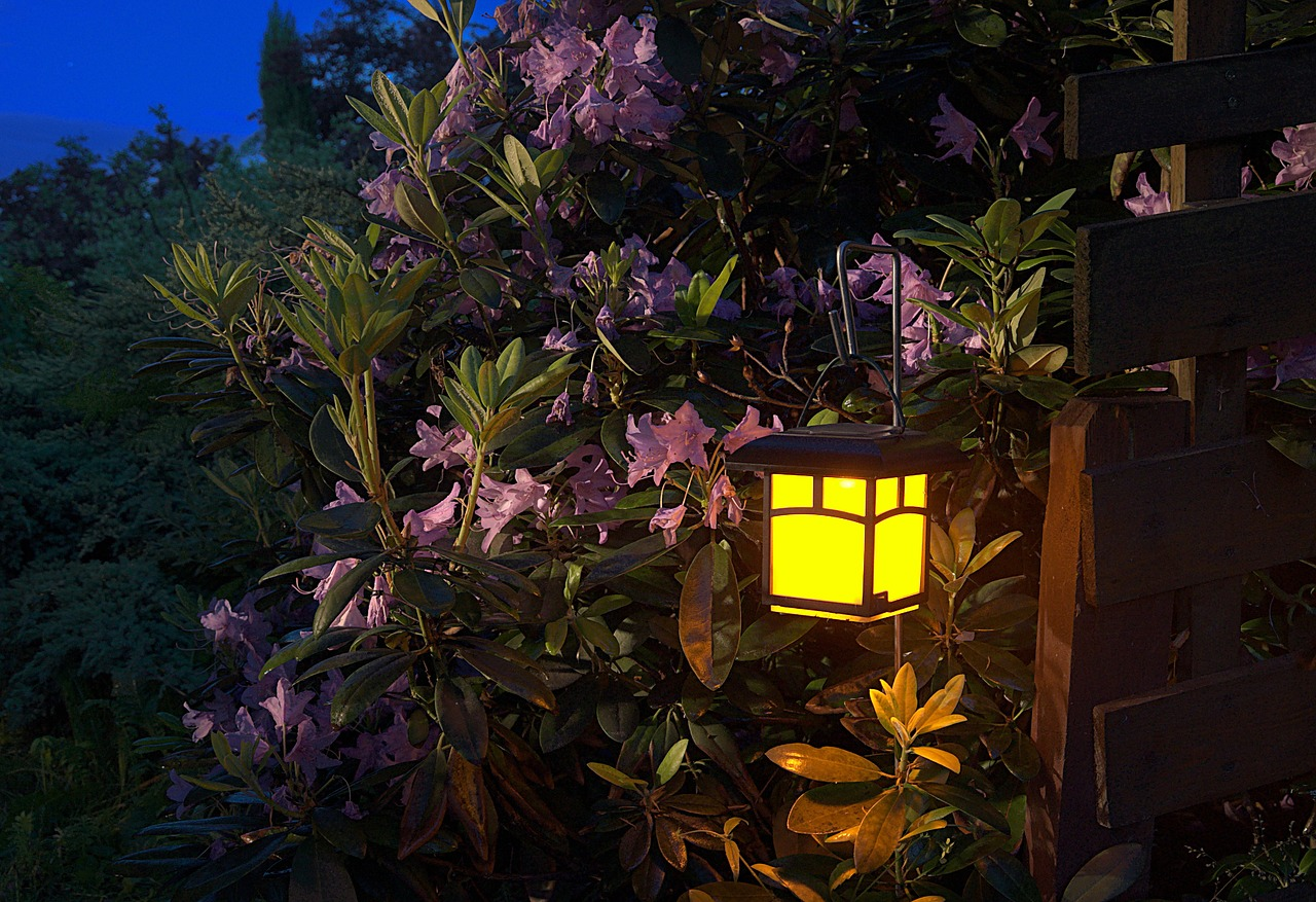 6 Creative Ways to Use Lighting in Your Garden